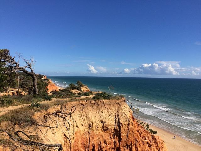 felicia-beach-1299907_640